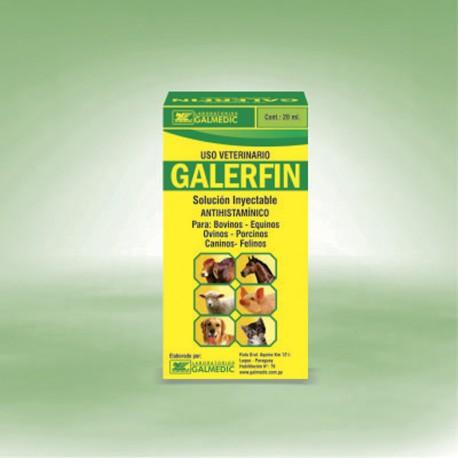 GALERFIN
